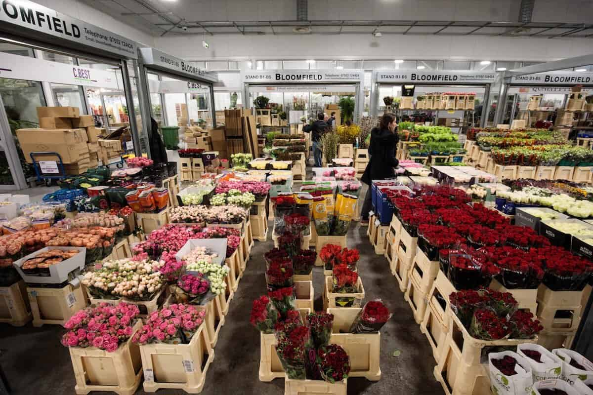things to do in London on your own - visit a flower market