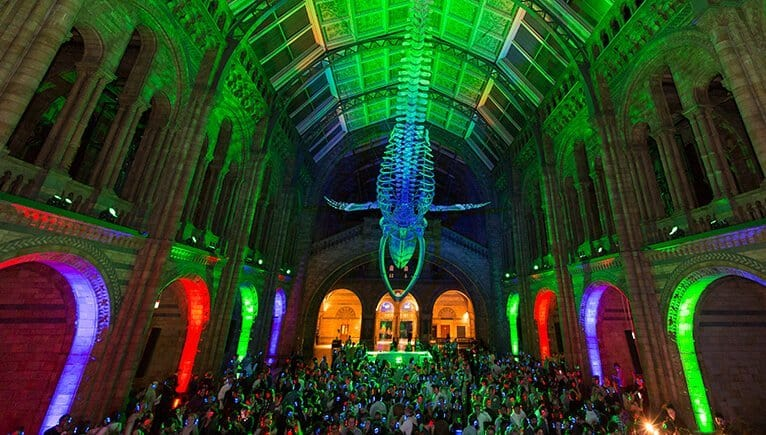 Visit the Natural History Museum after hours